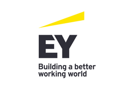 EY jobs in Ireland