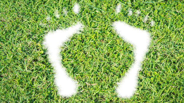 content green footprint grass sustainability