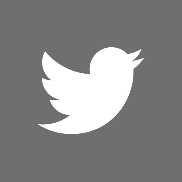 Twitter icon grey [square]